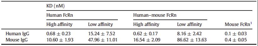 Figure 2 - human FcRn-serum albumin hFcRn-HSA mouse