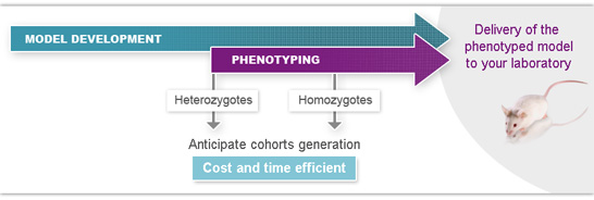 Flexible management of your mouse phenotyping project